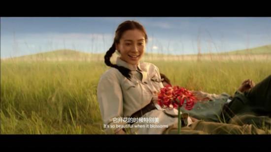 热映电影中的彼岸花 彼岸花的传说,彼岸花花语是什么