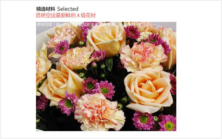 缤纷----香槟玫瑰7枝,香槟色花边或粉色康乃馨11枝