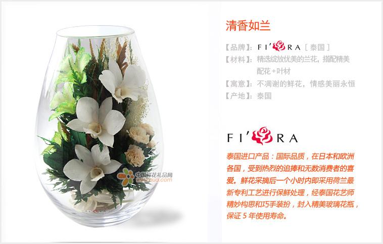 泰国进口保鲜花/清香如兰