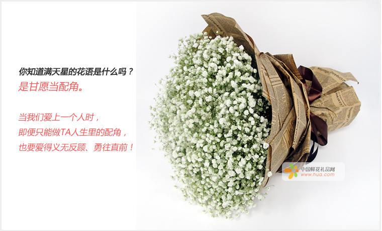 春 无声的爱 满天星一大扎,满天星是花束唯一和所有的花材 鲜花 -