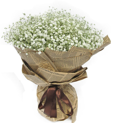 满天星一大扎,满天星是花束唯一和所有的花材 包 装:经典米色旧报纸图片