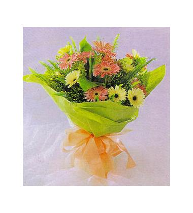橙黄双色太阳花(扶郎)16枝,排草,情人草,绿叶搭配 包装:绿色皱纹纸