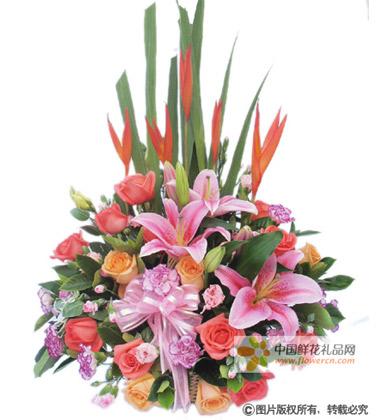 生小孩送什么花?-中国鲜花礼品网图片