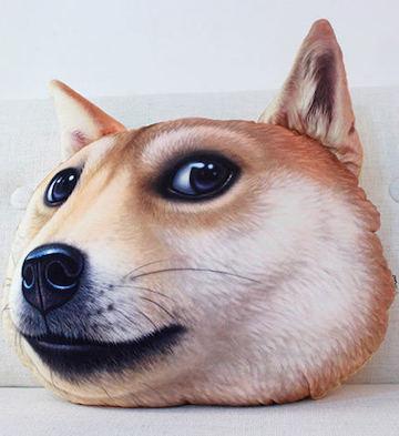 doge神烦狗-秋田犬