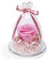 FlowerSong系列:厄瓜多尔粉玫瑰1朵(直径6-7cm),进口双色绣球、白色小星花,米花