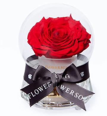公主的音乐水晶球·红玫瑰