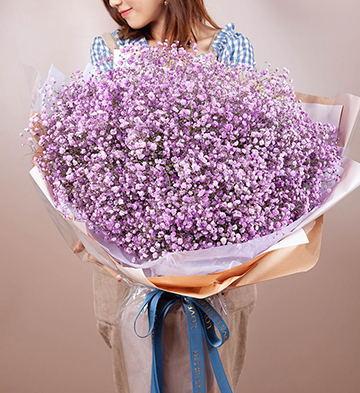 滿天星/特大號-淺紫