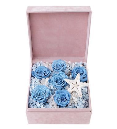 永生蓝玫瑰