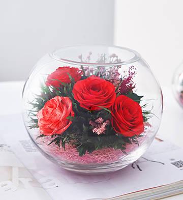 一路上有你/三色玫瑰