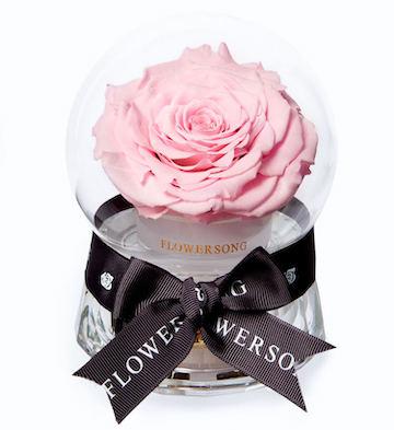 公主的音乐水晶球·粉玫瑰