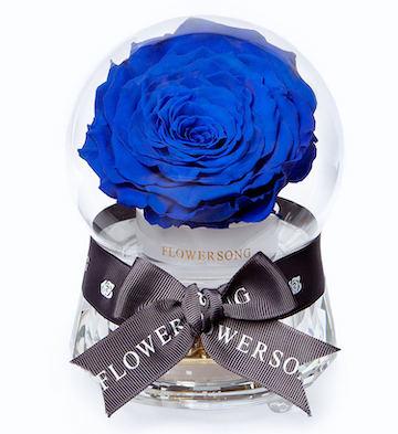公主的音乐水晶球·蓝玫瑰