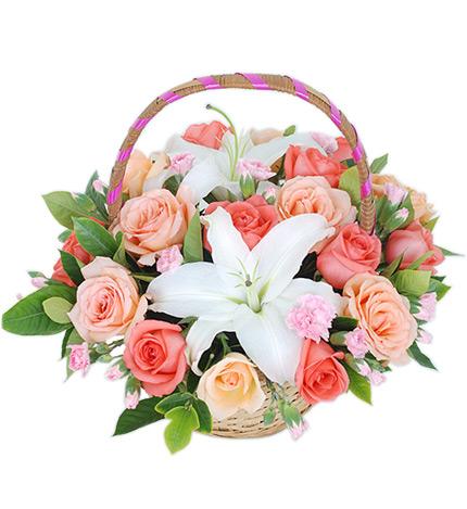 9朵粉玫瑰图片