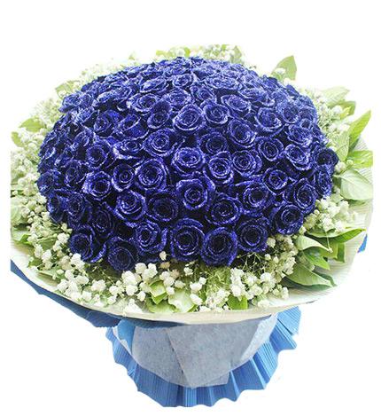 9朵蓝色妖姬图片